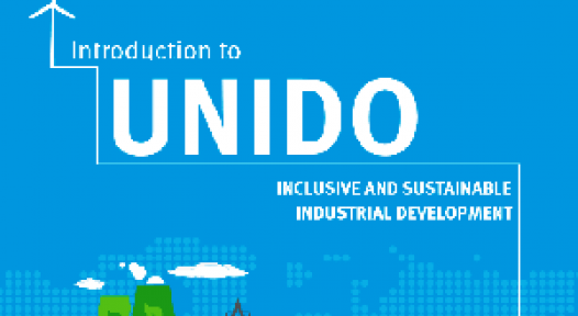 Egypt and India: UNIDO Supports Industrial Solar Heat