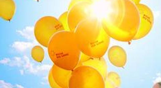 European Solar Days Expect more than Half a Million Participants