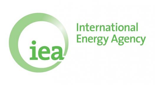 "IEA Study: ""Renewable energy for heat deserves greater attention"""