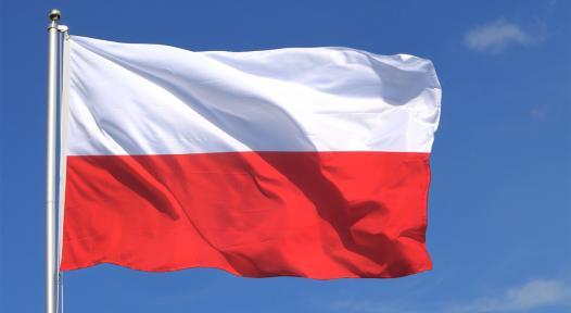 Poland: Unclear Political Framework in 2014