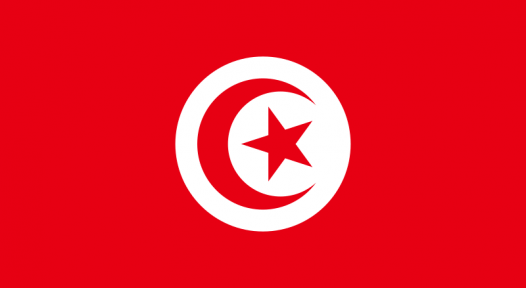 Tunisia: Government Extends PROSOL Support Scheme