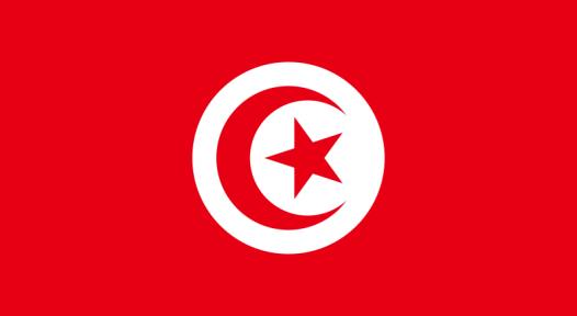 Tunisia: Government Extends PROSOL Support Scheme